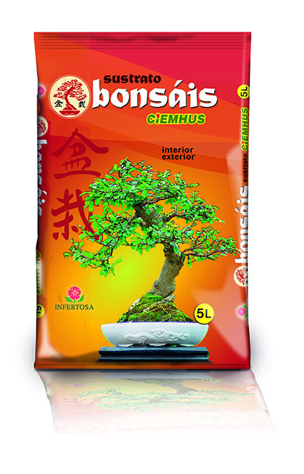 CIEMHUS BONSAI